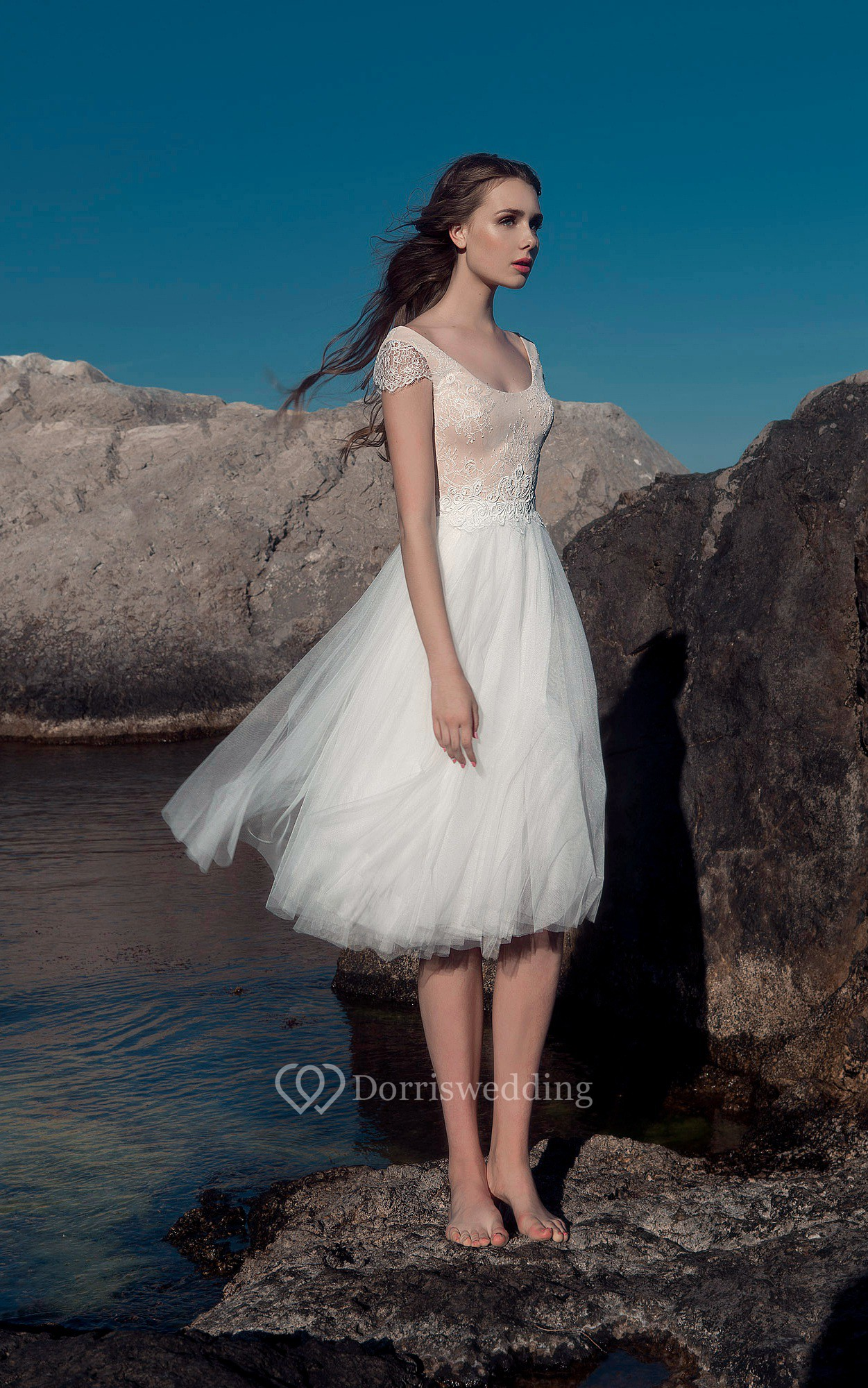 A Line Knee Length Scoop Neck Cap Sleeve Illusion Tulle