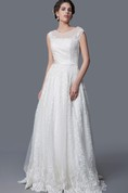 Illusion Jewel Neckline Backless A-line Lace Gown