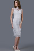 Demure High Neck Lace Dress With Cap Sleeve