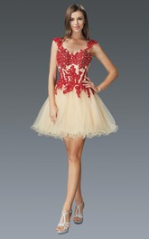 A-Line Short Queen Anne Tulle Dress With Appliques And Beading