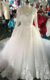 Long Sleeve Lace Appliqued Organza Dress With Illusion Back