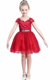 Flower Girl Notched Neck Tulle Mini Dress With Cap Sleeve