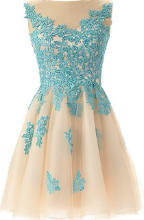 Magical A-line Tulle Short Dress With Lace Appliques