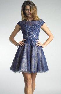 A Line Short Mini High Neck Short Sleeve Lace Illusion Dress