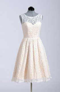 Sleeveless A-Line Short Lace Dress With Illusion Back