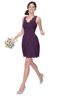 Short Lace Dress With Scalloped Edge Neckline
