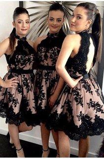 Charming Sleeveless High Neck Open Back Lace Dress