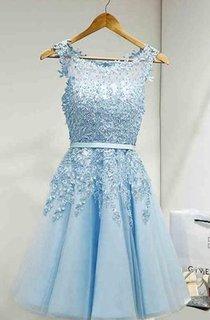 Lovely Popular Sleeveless Jeweled A-line Knee-length Lace Dress