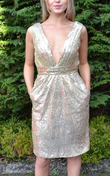 Deep V Neck Sleeveless Allover Sequined Knee Length Sheath Dress With V Back