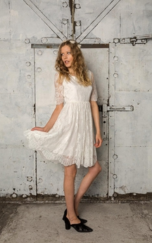 Half Sleeve A-Line Bateau Neck Lace Dress With Asymmetrical Hemline