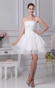 Sleeveless A-Line Mini Tulle Overlay and Dress With Appliques
