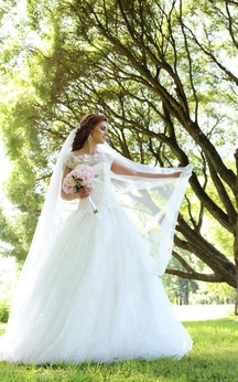 Lace-Bodice Tulle Cap Sleeve A-Line Bridal Gown With Illusion Back