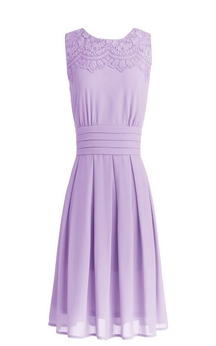 Sleeveless Short Ruffled and Embroidered Chiffon Dress
