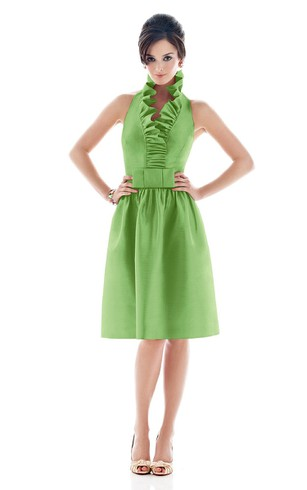 A Line Short Sleeveless Dress With Zipper Back