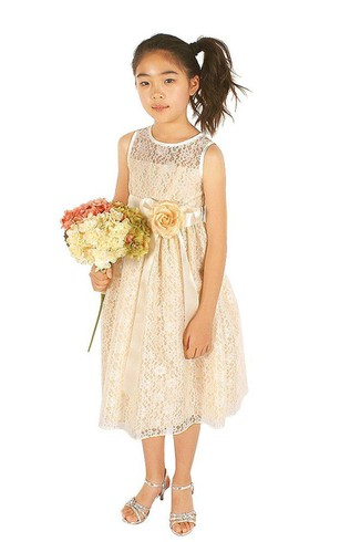 Sleeveless A-line Lace Dress With Floral Sash