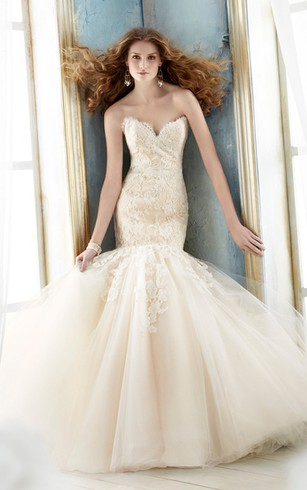 Magnificent Lace Bodice Tulle Dress With Removable Lace Shrug