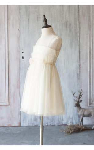 Illusion Neckline Sleeveless A-line Pleated Tulle Tea Length Dress With Flower