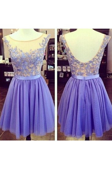 Cap Sleeve A-Line Tulle Dress With Appliques
