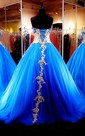 Ball Gown Long Appliques Zipper Lace-Up Back Tulle Lace Dress