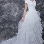 Ethereal V-neck and Layered Organza Wedding Gown